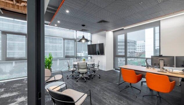 משרדי-Locus-view-תקרת-Line-EchoShape-4