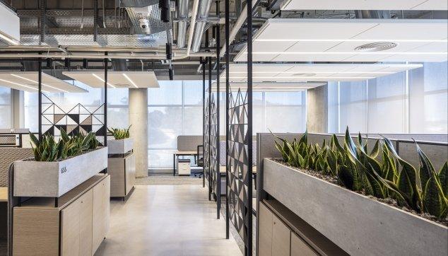 משרדי נובה - Focus E + 0556